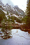 Click image for larger version.  Name:In the Cascades.jpg Views:42 Size:129.2 KB ID:213207