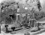 Click image for larger version.  Name:Hollywood Cemetery 1.jpg Views:48 Size:145.7 KB ID:197961
