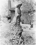 Click image for larger version.  Name:Hollywood Cemetery 2.jpg Views:44 Size:211.6 KB ID:197962