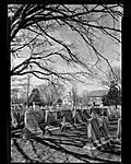 Click image for larger version.  Name:LCcemetary2D9A6337.jpg Views:59 Size:123.3 KB ID:215286