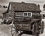 Click image for larger version.  Name:Pioneer Homestead Flourisant Colorado.jpg Views:56 Size:109.4 KB ID:217966