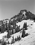 Click image for larger version.  Name:In the N.  Cascades.jpg Views:28 Size:158.4 KB ID:218249