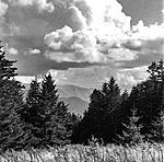 Click image for larger version.  Name:JH Kodak 400TMY 15OCT21 -13b_ps copy.jpg Views:22 Size:114.3 KB ID:220556