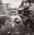 Click image for larger version.  Name:yosemite-national-park-california-by-lee-friedlander-0925.jpg Views:61 Size:137.1 KB ID:137045