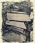 Click image for larger version.  Name:Cyanotype toned in walnut.jpg Views:89 Size:139.1 KB ID:214887