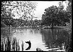 Click image for larger version.  Name:Hollow pond.jpg Views:11 Size:103.6 KB ID:218573