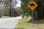 Click image for larger version.  Name:Horse Xing.jpg Views:23 Size:104.7 KB ID:203621
