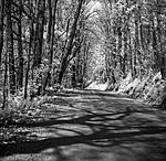 Click image for larger version.  Name:River Road ealy spring.jpg Views:62 Size:149.3 KB ID:216259