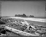 Click image for larger version.  Name:Sea Stack.jpg Views:162 Size:157.5 KB ID:214164