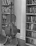Click image for larger version.  Name:Olivia's Cello Diafine less exposed - 2020-01-12-0002 cropped levels scaled.jpg Views:124 Size:58.9 KB ID:199513