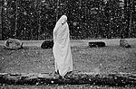 Click image for larger version.  Name:Shrouded Figure, Snow Squall.jpg Views:55 Size:116.5 KB ID:198384